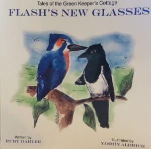 Flash's New Glasses
