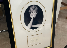 Princess Diana picture