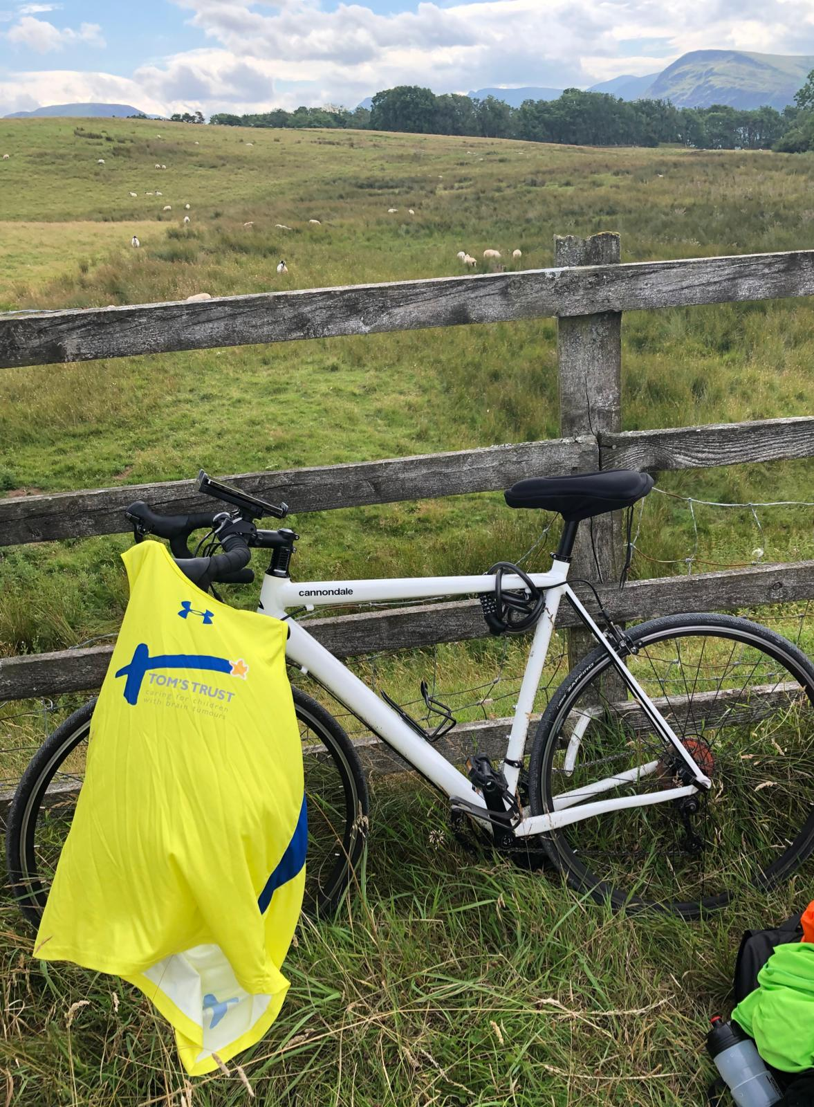 A Tom's Trust vest on a bike in front of a field of sheep.